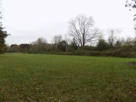 39.37 Acres * Open & Wooded * As a Whole featured photo 6