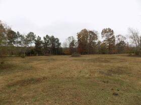 39.37 Acres * Open & Wooded * As a Whole featured photo 7