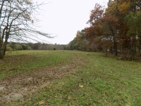 39.37 Acres * Open & Wooded * As a Whole featured photo 8