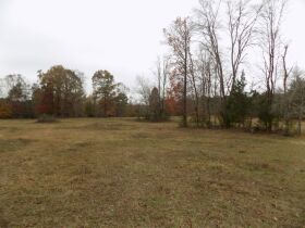 39.37 Acres * Open & Wooded * As a Whole featured photo 9