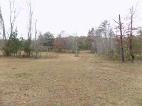 39.37 Acres * Open & Wooded * As a Whole featured photo 11