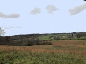 107 Acres - Beautiful Views- Bluff City, TN featured photo 11