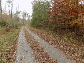 5.94 Acres * Wooded * Creek Frontage featured photo 3