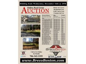 Middle Georgia Multi Property Real Estate Auction featured photo 10