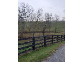 F801     3278 Wallingford Road, Flemingsburg, KY 410411  (Farm) (Residential) (Acreage) featured photo 4