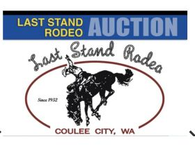 Last Stand Rodeo Timed Fundraising Auction featured photo 1