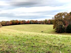 SELLING ABSOLUTE! 180+/- Acres Offered in 20 Tracts - House, Barns, Outbuildings, Mobile Home, 2 Ponds in McMinnville - Estate Auction June 12th featured photo 7