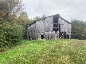 Absolute Auction 4 Tracts of Beautiful Property in McMinn County featured photo 1