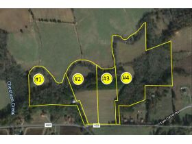 Absolute Auction 4 Tracts of Beautiful Property in McMinn County featured photo 3