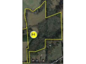 Absolute Auction 4 Tracts of Beautiful Property in McMinn County featured photo 7