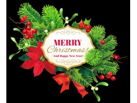 Merry Christmas featured photo 2