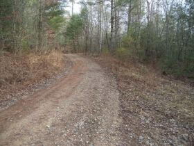 61.29 Acres in 6 Tracts on Williams Creek Road, Oneida, TN * Pre-Auction Offer Accepted * SOLD* featured photo 2