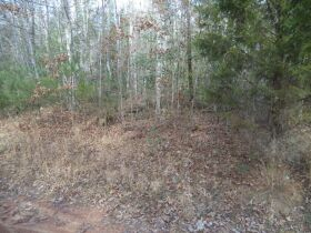 61.29 Acres in 6 Tracts on Williams Creek Road, Oneida, TN * Pre-Auction Offer Accepted * SOLD* featured photo 4