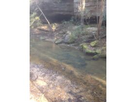 61.29 Acres in 6 Tracts on Williams Creek Road, Oneida, TN * Pre-Auction Offer Accepted * SOLD* featured photo 6