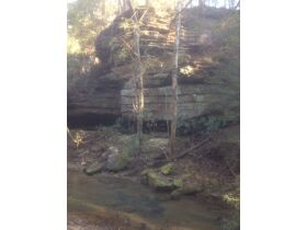 61.29 Acres in 6 Tracts on Williams Creek Road, Oneida, TN * Pre-Auction Offer Accepted * SOLD* featured photo 7