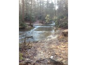 61.29 Acres in 6 Tracts on Williams Creek Road, Oneida, TN * Pre-Auction Offer Accepted * SOLD* featured photo 8