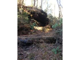 61.29 Acres in 6 Tracts on Williams Creek Road, Oneida, TN * Pre-Auction Offer Accepted * SOLD* featured photo 10