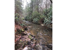 61.29 Acres in 6 Tracts on Williams Creek Road, Oneida, TN * Pre-Auction Offer Accepted * SOLD* featured photo 12