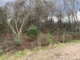 NCDOT 10 Day Upset Period - .45+/- Acres Located at 8038 Bartlett Rd in Charlotte, NC featured photo 4