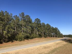 109 ± Acres   Excellent Recreational Tract   Beautiful Homesites featured photo 8