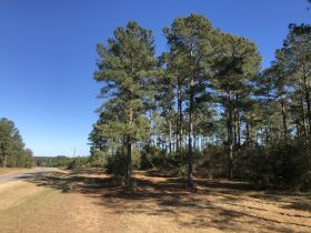 109 ± Acres   Excellent Recreational Tract   Beautiful Homesites featured photo 5