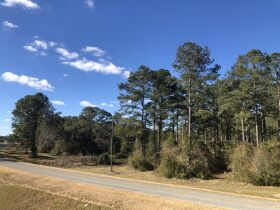 109 ± Acres   Excellent Recreational Tract   Beautiful Homesites featured photo 10