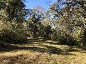 109 ± Acres   Excellent Recreational Tract   Beautiful Homesites featured photo 11