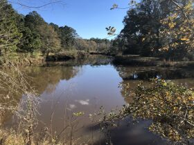 109 ± Acres   Excellent Recreational Tract   Beautiful Homesites featured photo 2