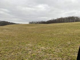 Absolute Auction - 45 Acres - House - Farm Equipment, Vehicles, Guns & Personal property featured photo 5