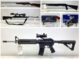 February Firearm and Ammunition Auction featured photo 1