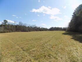 6 Acres +/- Located Near Rock Spring GA featured photo 4