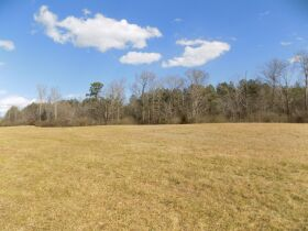 6 Acres +/- Located Near Rock Spring GA featured photo 5