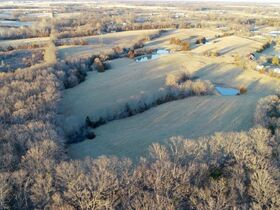 203+/- Prime Acres On S. Rangeline Rd., Ashland - Sells To High Bidder featured photo 12