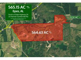 Epes, Alabama Bankruptcy Real Estate Auction 565.15± Acres featured photo 1
