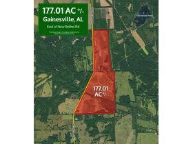 Gainesville, Alabama Bankruptcy Real Estate Auction 177.01± Acres featured photo 1