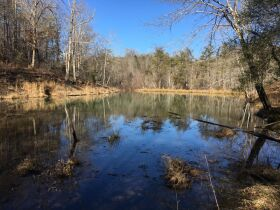 Online Only Auction - 130 acres off Big Four Rd. featured photo 3