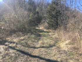 Online Only Auction - 130 acres off Big Four Rd. featured photo 5