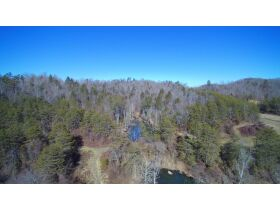Online Only Auction - 130 acres off Big Four Rd. featured photo 10