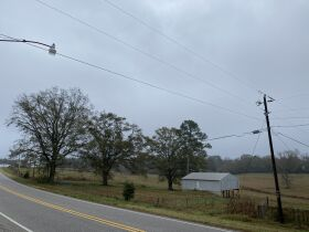 33 acres offered in tracts and combinations in Jemison, Alabama.  The Roy Martin Estate featured photo 3