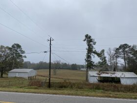 33 acres offered in tracts and combinations in Jemison, Alabama.  The Roy Martin Estate featured photo 4