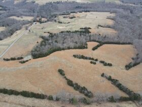 156 +/- Acre Farm at Absolute Auction featured photo 3