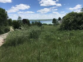 Torch Lake Vacant Land- 2.1 Acres- DNR Properties featured photo 9