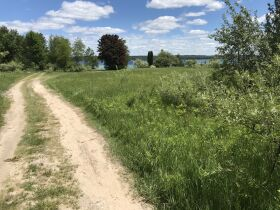 Torch Lake Vacant Land- 2.1 Acres- DNR Properties featured photo 11