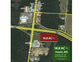 Commercial Real Estate Auction Forest, MS featured photo 1