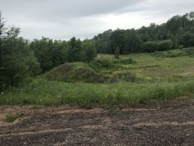 40A Vacant Land, Watersmeet Twp, Gogebic County- DNR Properties featured photo 10