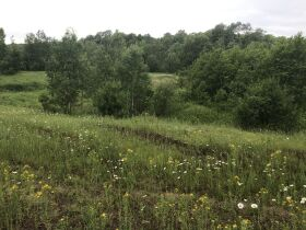 40A Vacant Land, Watersmeet Twp, Gogebic County- DNR Properties featured photo 12