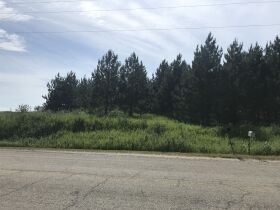 2A Vacant Land on Ford River, Delta County- DNR Properties featured photo 3