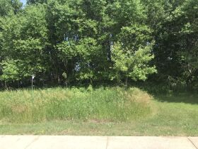 Forested Vacant Lot on Lakeshore Dr, Escanaba- DNR Properties featured photo 2
