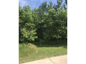 Forested Vacant Lot on Lakeshore Dr, Escanaba- DNR Properties featured photo 3