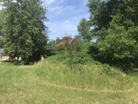 Forested Vacant Lot on Lakeshore Dr, Escanaba- DNR Properties featured photo 6